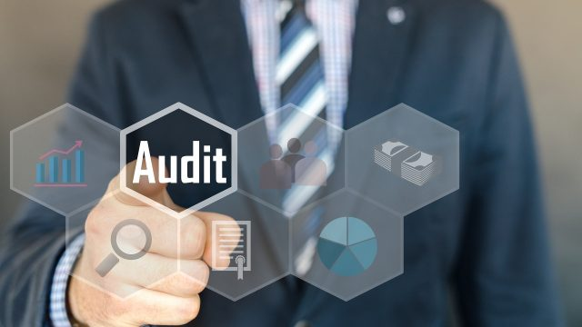 The Role of Management Audit in Corporate Management