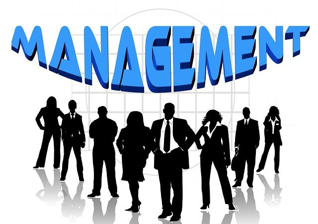 Definition of Management and Its Use in Strategy Development